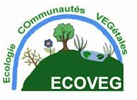 ecoveg4